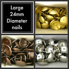 Large 24mm diameter headed upholstery nails Furniture fabric studs tacks pins