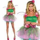 Ladies Green Woodland Fairy Fancy Dress Costume Pixie Outfit Green Fairy