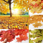 100 Pcs Artificial Fall Silk Leaves Wedding Favor Autumn Maple Leaf Decorations