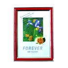 New Red Standard A4 Document Photo Frame Poster Frame 21 x 29.7 cm