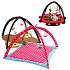 Cat Pet Foldable Activity Play Tent Mat Bed Pad Blanket House with Bells Toy