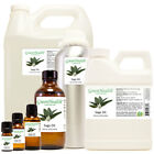 Sage Essential Oil 100% Pure FreeShip Many Sizes