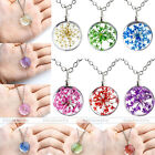 Dyeing Dried Flower Cluster Round Charming Resin Pendant Chain Necklace Jewelry