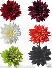 Extra Large 28cm Silk Dahlia Flower Head Displays Quality New Artificial Flowers