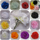 72 Silk flower Artificial Carnation picks Seasonal Colours 8cm approx short pick