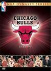 NBA Dynasty Series - Chicago Bulls: The 1990s (DVD, 2004, 4-Disc Set) New