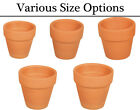 Mini Terracotta Plant Flower Pots for Crafts  - Choose Your Size