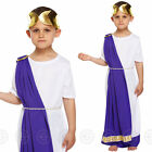 BOYS CAESAR FANCY DRESS COSTUME ROMAN KING TOGA GREEK JULIUS CHILDS KIDS EMPEROR