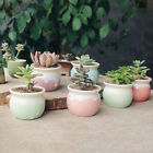 Mini Succulent Planter Macaroon Glazed Ceramic Flower Pot Plant Box Garden Decor