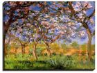 Canvas Print, Claude Monet, Giverny in Springtime, 1899-1900