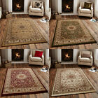 Think Rugs Regency 7896 Traditional 100% Decolan Heat Set Rug