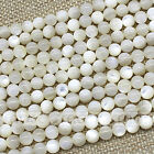 White Natural Tridacnidae Round Shape Silver Line Design Loose Beads 4 6 8 10mm