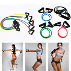 2017 Fashion  Resistance Bands Workout Exercise Yoga Crossfit Fitness Tubes -TPR