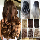 1PCS Thick Full Head Clip in Human Hair Extensions Ombre Long Straight Curly Nb2