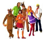 Adult Licensed SCOOBY DOO and Gang Characters Fancy Dress Costume TV Outfits