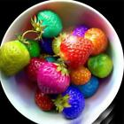 50/100Pcs Strawberry Seeds Red Black Blue Everbearing Fruit Plants