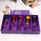 24K Gold Plated Golden Rose Blume 24cm Valentinstag Geschenkbox Lovers Gift