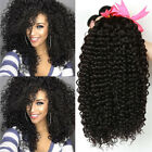 4 Bundles Curly Brazilian Virgin Human Hair Extensions Weave 400gr US Ship F761