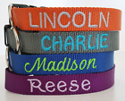 Embroidered Nylon Dog Collar Personalized Custom Adjustable, Name and Number