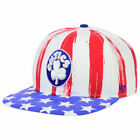 Boston Celtics NBA USA Log Cabin Snapback Stars & Stripes Retro Hat Cap America on eBay