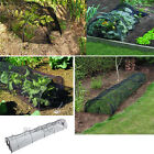 Robust Black 3M Net Grow Tunnel - Cloche Garden Patio Seeds & Plants 1/2/5 Packs