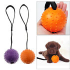 Tough Durable Pimpled Effect Ball Dog Tug Rubber Rope Play Fun Strong Fetch