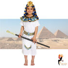Boys Fancy Dress Costume Egyptian Pharaoh White Outfit Kids School Book Week