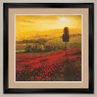 35W*x35H* SHADES OF POPPIES by STEVE THOMS - DOUBLE MATTE, GLASS and FRAME
