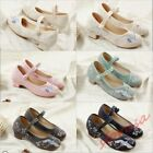 Women Block Heel Chinese Hanfu Dress shoes Embroidery Fashion Floral Mary Janes