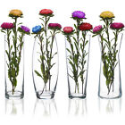 Tall Glass Flower Vase Pot Home Wedding Decoration Table Centerpiece Plant Vases