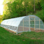 5 Year 6 Mil Clear Plastic Greenhouse Poly Film 25 ft. Wide x Various Lengths