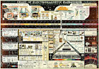 Chart of Electromagnetic Radiations Vintage Poster Science Teacher