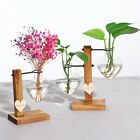 Nordic Style Cutting Propagation Vase Stand Home Decor Indoor Plant Hydroponic