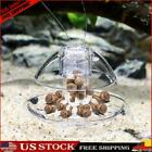 Grass Tank Snail Removal Device Fish Tank Snail Catcher Trapping Cleaner Tool