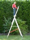 7-12 Rung Combi/Combination/Extension/Triple/Treble/3 Section/Multi/Step Ladder