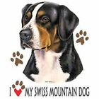Swiss Mountain Dog Love T Shirt Pick Your Size