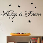 Always & Forever Butterfly Art  Wall Quote Stickers Wall Decals Words Lettering