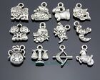 Wholesale Antique Silver Tone Constellation Zodiac Charms Pendants Findings Y50