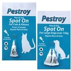 FLEA AND TICK REPELLENT SPOT ON PESTROY BY BOB MARTIN CATS KITTENS DOGS PUPPIES