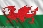 Rugby 6 Nations Wales Welsh Pride National Tableware Decorations One Listing PS