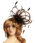 New Brown Wedding Feather Fascinator Hat  Choose any colour Satin & Feather