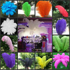 "10/50pcs High Quality Natural OSTRICH FEATHERS 15-55cm/6-22"" inch"