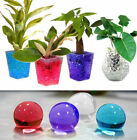 50g One Pack , Magic Water Pearl Plant Flower Crystal Soil Mud Beads 12Colors