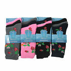 L008 LADIES GIRLS CUTE STRAWBERRY FRUIT DESIGN PATTERN DRESS WORK NEW SOCKS 4-7