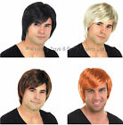 Mens Short Straight Fancy Dress Wig 60s 70s 80s 90s Boy Band Costume Accessory