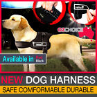 Golden Panda Dog Harness with Anti-Bite Durable Steel Chain Lead Red Black