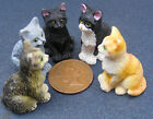 1:12 Scale Sitting Resin Cat Dolls House Miniature Pet Animal Accessory