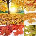100Pcs Fall Maple Leaves Silk Flower Petals Wedding Party Table Decorations New