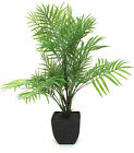 Artificial Mountain Palm ~ Tropical plant ~ Available unpotted or potted