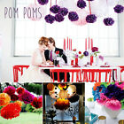 10Pcs DIY Tissue Paper Poms Penoy Flower Balls Birthday Wedding Party Xmas Decor